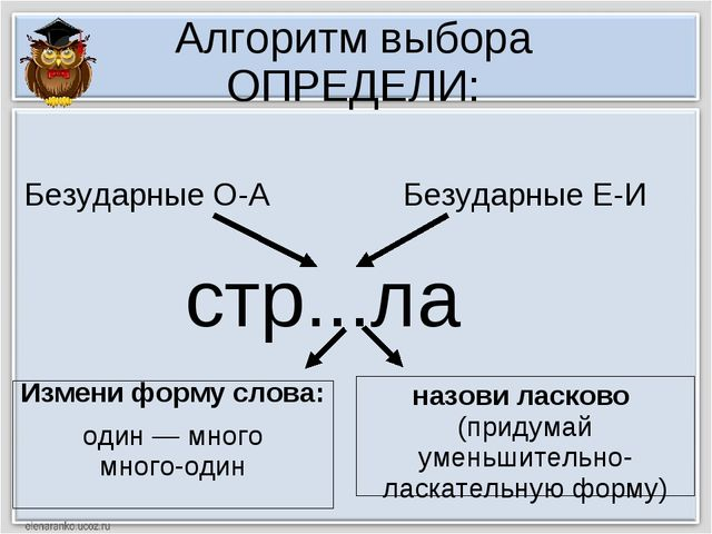 Алгоритм выбора ОПРЕДЕЛИ: стр...ла Измени форму слова: один — много много-оди...