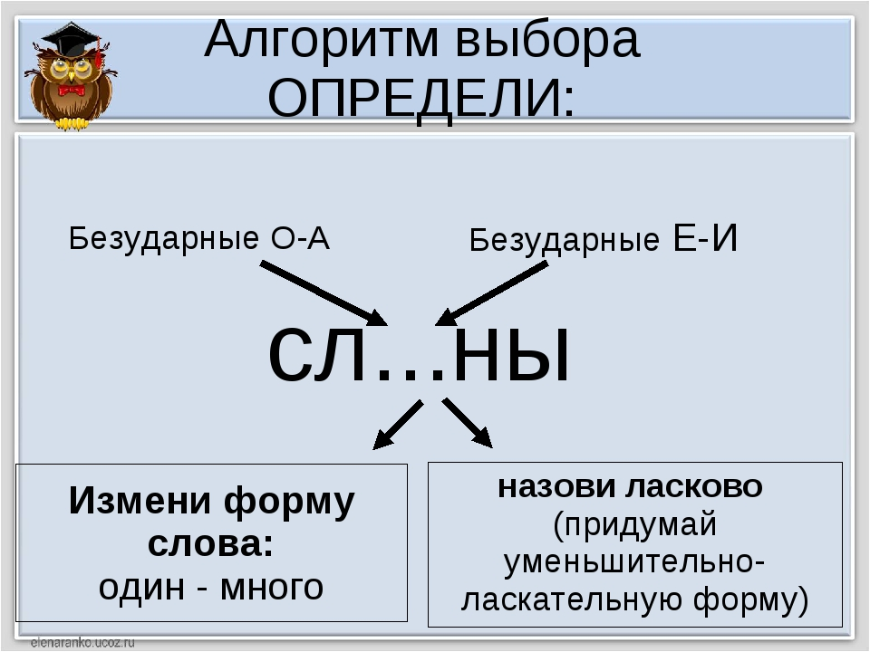 Алгоритм выбора ОПРЕДЕЛИ: сл...ны Измени форму слова: один - много назови лас...