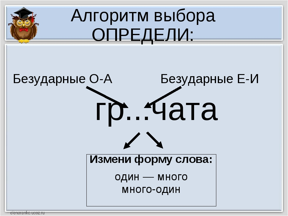 Алгоритм выбора ОПРЕДЕЛИ: гр...чата Измени форму слова: один — много много-од...