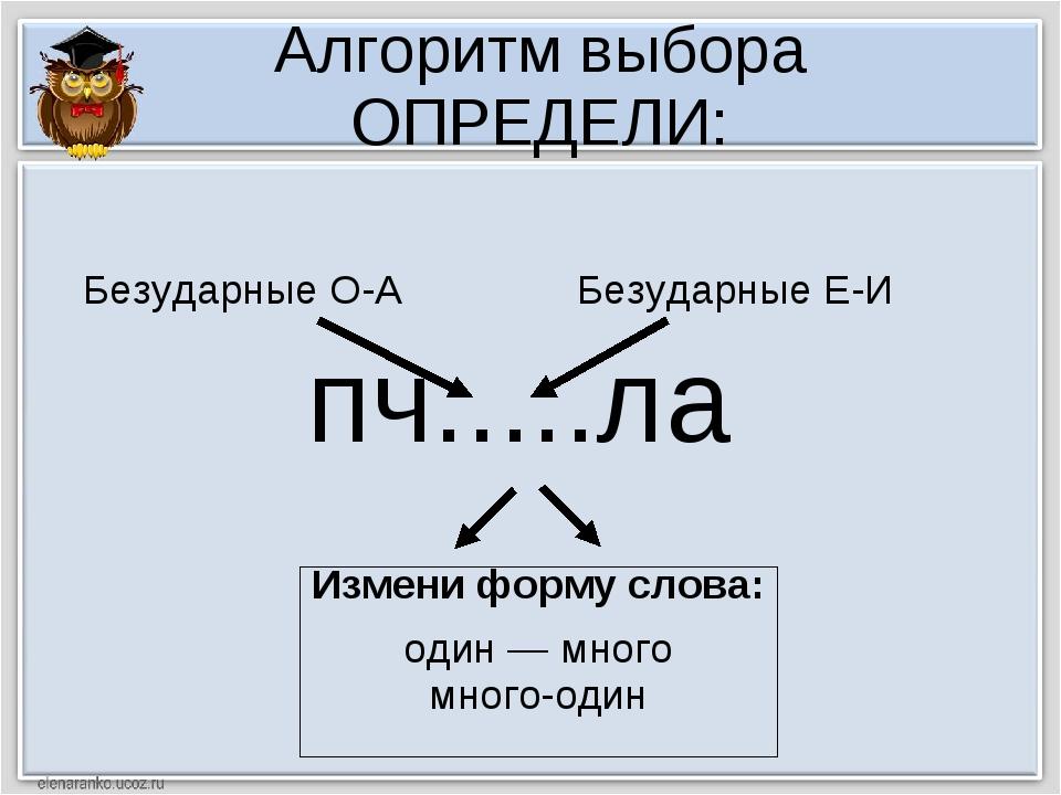 Алгоритм выбора ОПРЕДЕЛИ: пч.....ла Измени форму слова: один — много много-од...