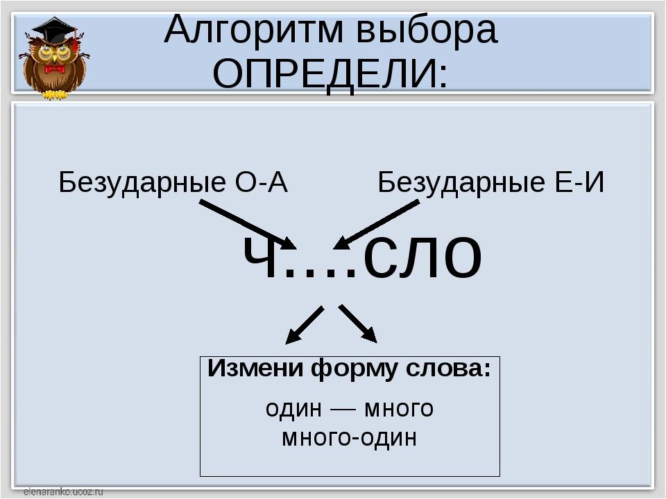 Алгоритм выбора ОПРЕДЕЛИ: ч....сло Измени форму слова: один — много много-оди...