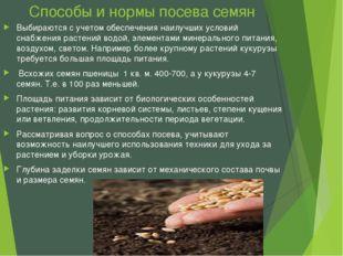 Способы и нормы посева семян Выбираются с учетом обеспечения наилучших услови