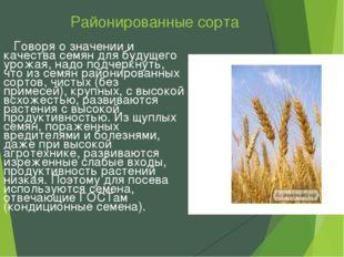 Районированные сорта Говоря о значении и качества семян для будущего урожая,