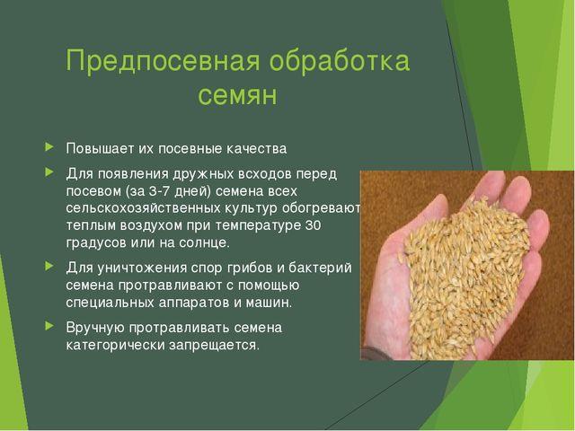 Предпосевная обработка семян Повышает их посевные качества Для появления друж...