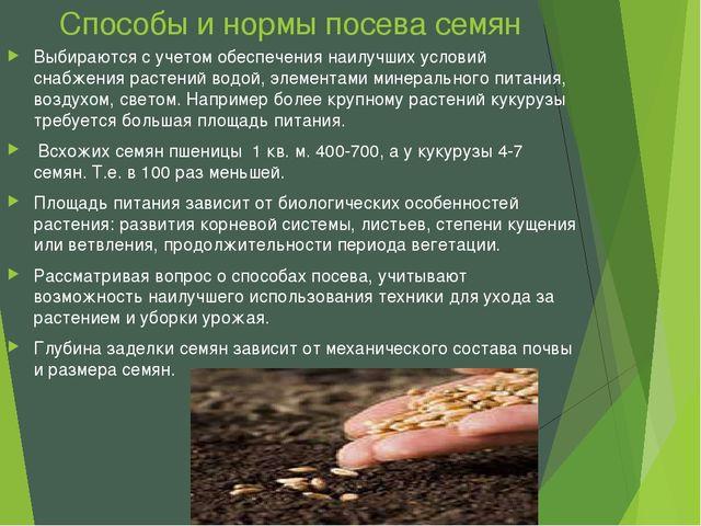 Способы и нормы посева семян Выбираются с учетом обеспечения наилучших услови...