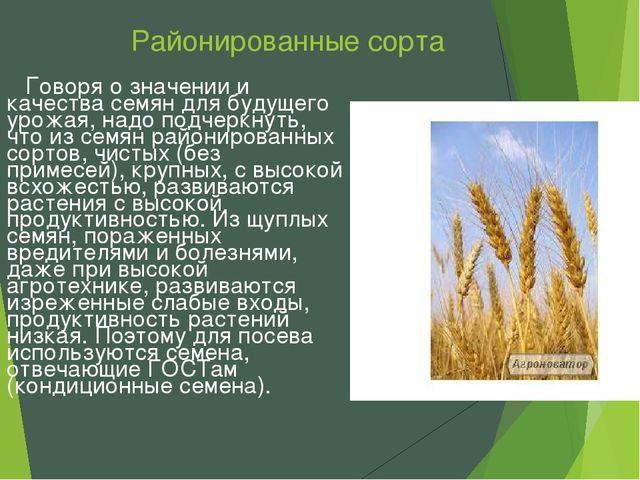 Районированные сорта Говоря о значении и качества семян для будущего урожая,...