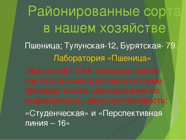 Районированные сорта в нашем хозяйстве Пшеница; Тулунская-12, Бурятская- 79....