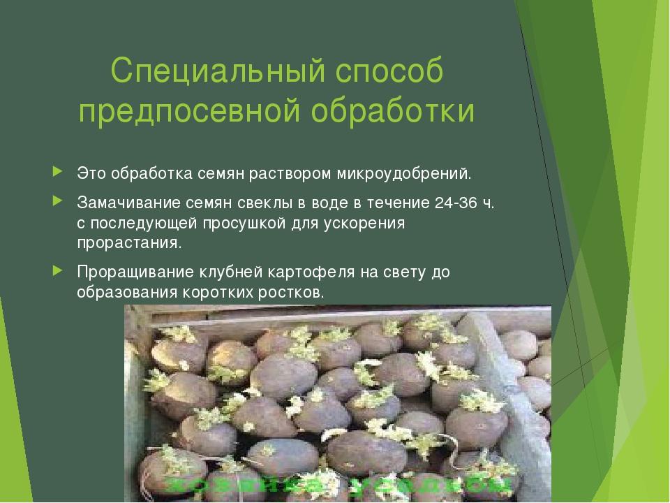 Специальный способ предпосевной обработки Это обработка семян раствором микро...