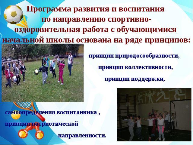 Программа развития и воспитания по направлению спортивно- оздоровительная ра...