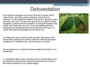 Deforestation Forest enrich the atmosphere so necessary for the life of oxyge