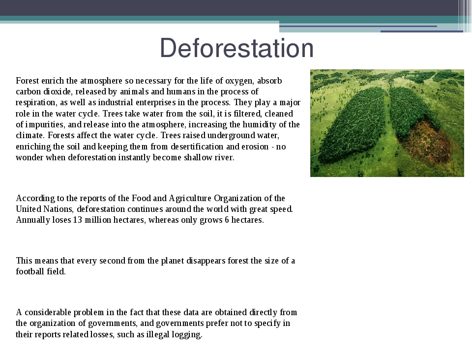 Deforestation Forest enrich the atmosphere so necessary for the life of oxyge...