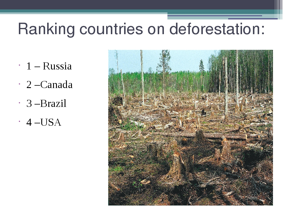 Ranking countries on deforestation: 1 – Russia 2 –Canada 3 –Brazil 4 –USA