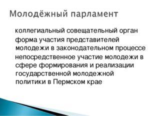  коллегиальный совещательный орган  форма участия представителей молодежи в