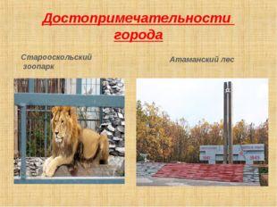 Достопримечательности города Старооскольский зоопарк Атаманский лес