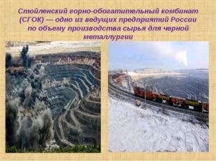 Стойленский горно-обогатительный комбинат (СГОК)— одно изведущих предприяти