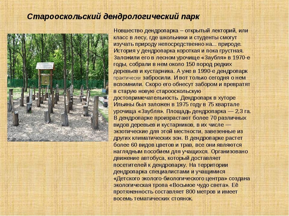 Новшество дендропарка – открытый лекторий, или класс в лесу, где школьники и...