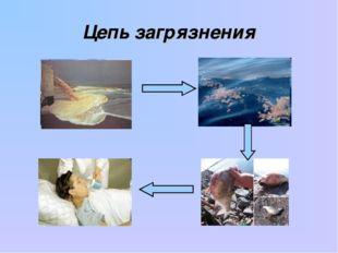 Цепь загрязнения