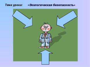 Тема урока: «Экологическая безопасность»