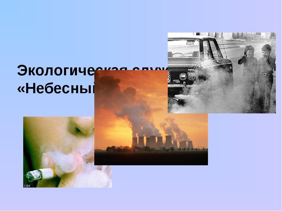 Экологическая служба «Небесный патруль»