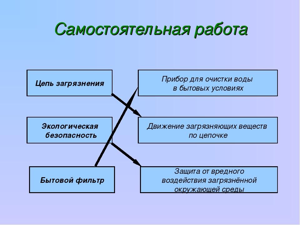 Самостоятельная работа Цепь загрязнения Экологическая безопасность Бытовой фи...