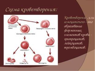 Схема кроветворения: Кроветворение, или гемоцитопоэз - это образование форме