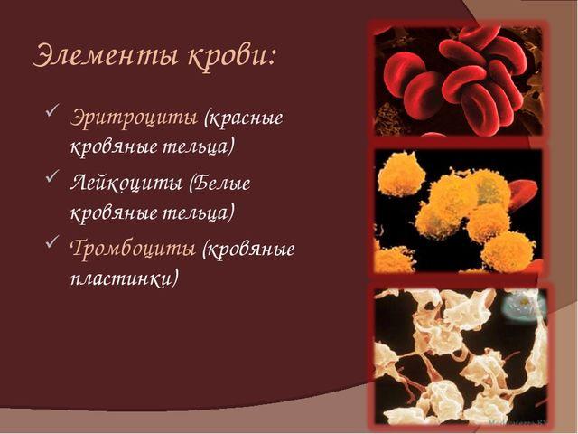 Элементы крови: Эритроциты (красные кровяные тельца) Лейкоциты (Белые кровяны...