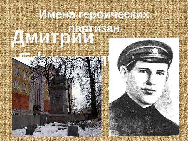 Имена героических партизан Дмитрий Ефимович Кравцов