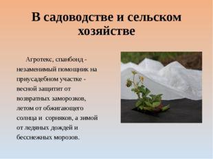 В садоводстве и сельском хозяйстве Агротекс, спанбонд - незаменимый помощник