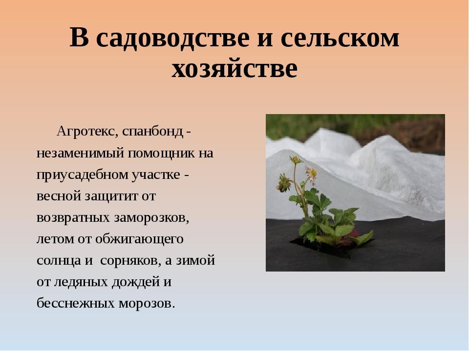В садоводстве и сельском хозяйстве Агротекс, спанбонд - незаменимый помощник...