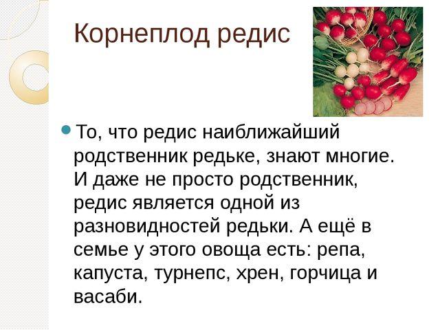 Корнеплод редис То, что редис наиближайший родственник редьке, знают многие....