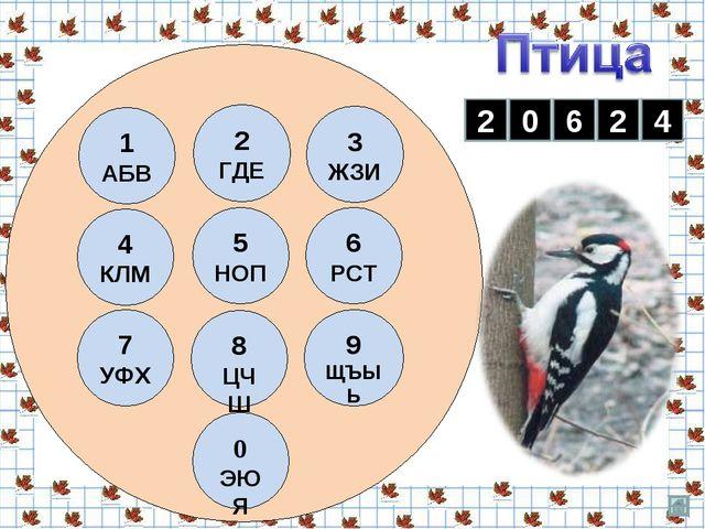 Д Я Т Л Е 2 0 6 2 4