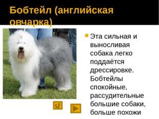 При подготовке презентации использовались материалы сайтов http://wolcha.ru/