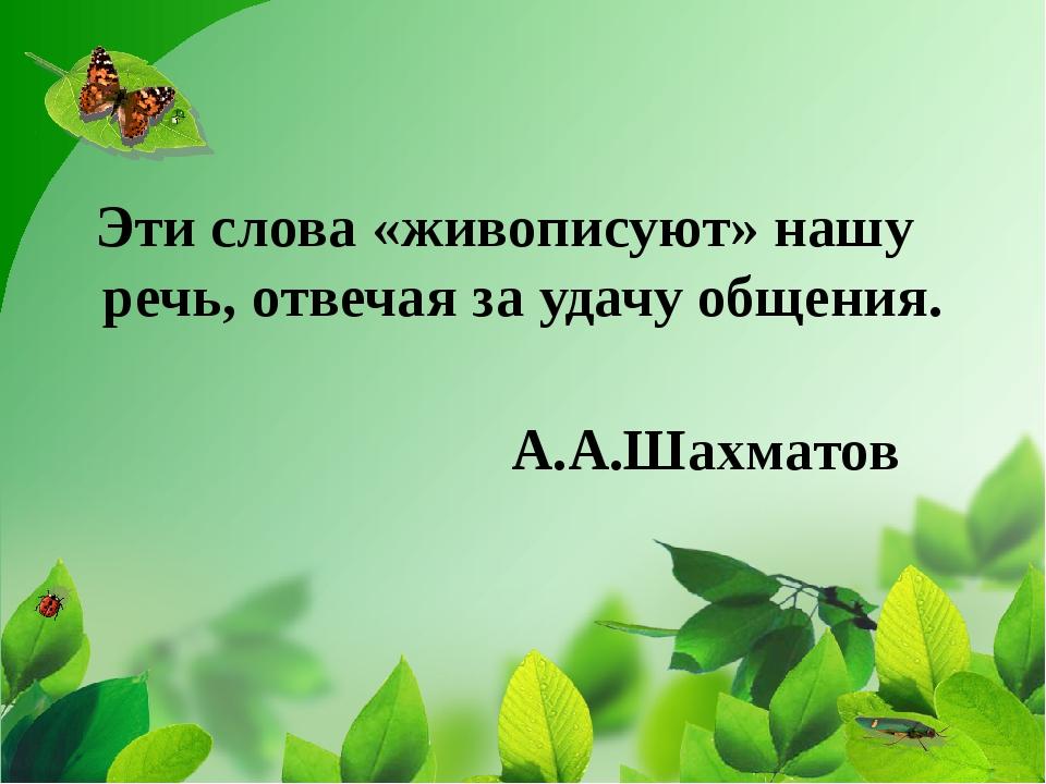 Эти слова «живописуют» нашу речь, отвечая за удачу общения. А.А.Шахматов