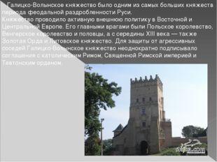 Галицко-Волынское княжество было одним из самых больших княжеств периода фео