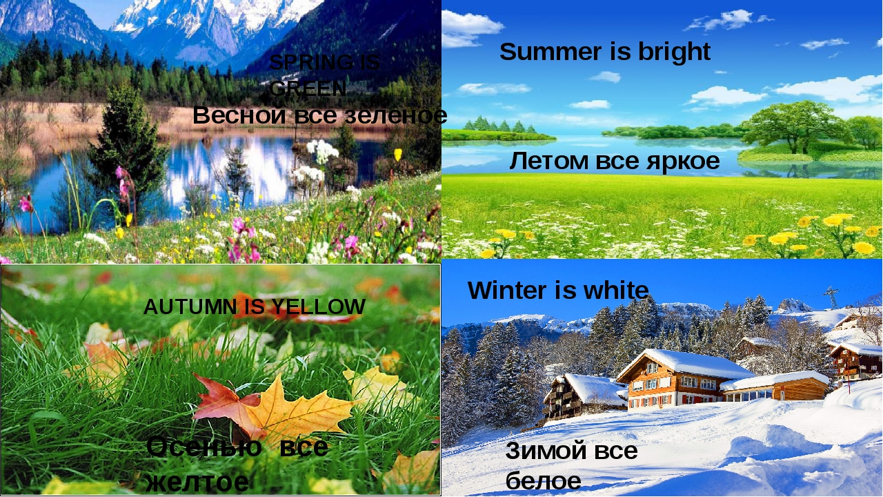 SPRING IS GREEN Summer is bright AUTUMN IS YELLOW Winter is white Зимой все б...