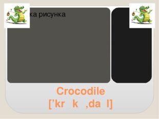 Crocodile ['krɒkə'daɪl]
