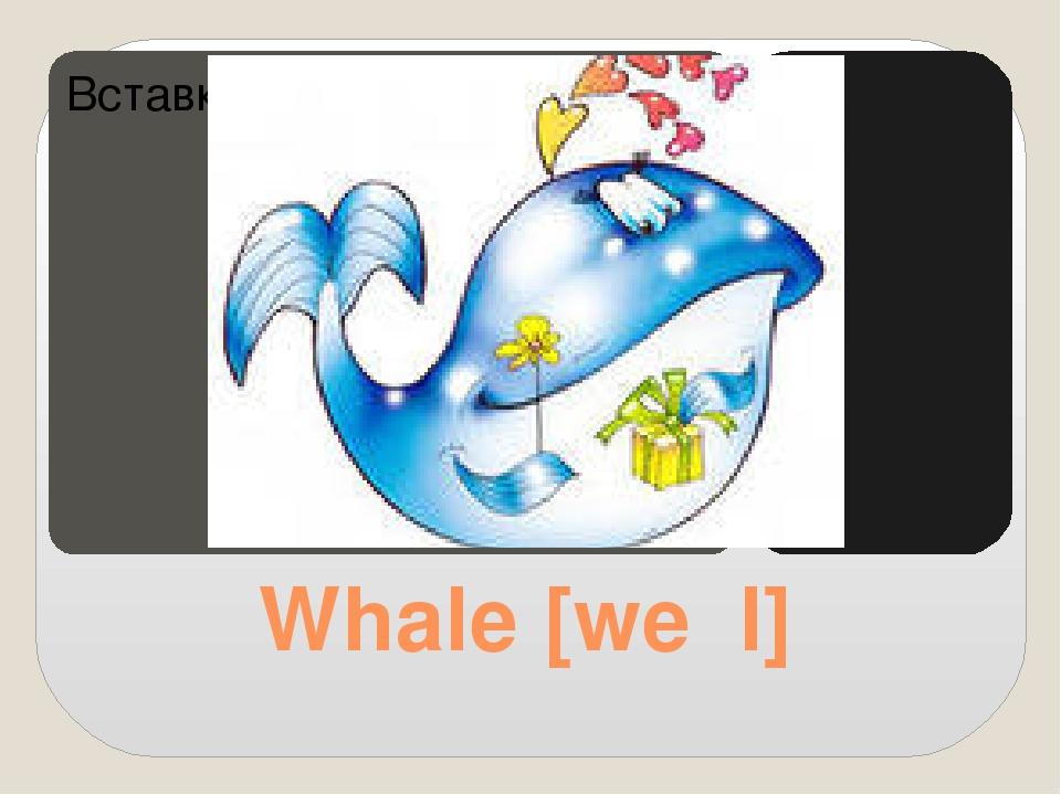 Whale [weɪl]