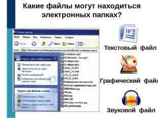 Какие файлы могут находиться электронных папках? Текстовый файл Графический ф