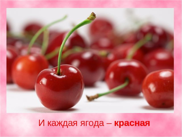 И каждая ягода –красная