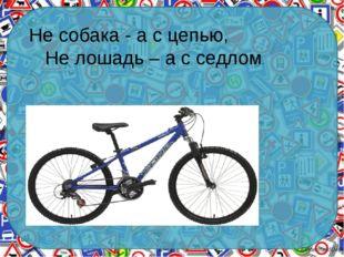 Не собака - а с цепью, Не лошадь – а с седлом. Ekaterina050466