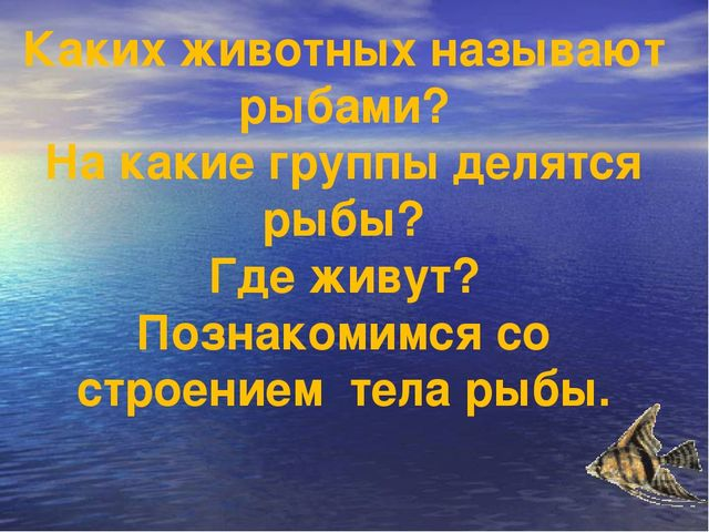 Каких животных называют рыбами? На какие группы делятся рыбы? Где живут? Позн...