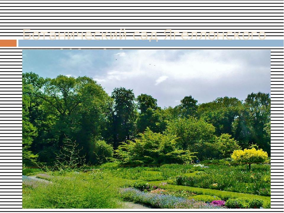 Ботанический сад Ягеллонского университета