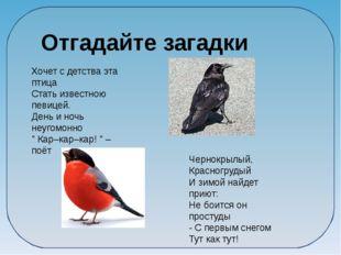 Отгадайте загадки Хочет с детства эта птица Стать известною певицей. День и