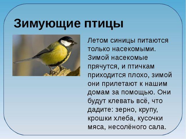 Зимующие птицы Летом синицы питаются только насекомыми. Зимой насекомые пряч...