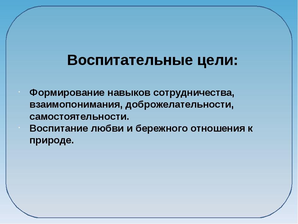 Воспитательные цели: Формирование навыков сотрудничества, взаимопонимания, д...