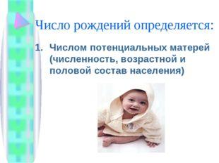 Число рождений определяется: Числом потенциальных матерей (численность, возра