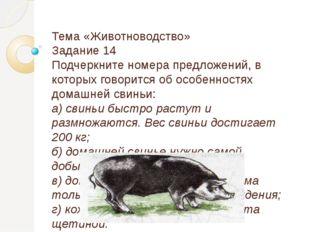 Тема «Животноводство» Задание 14 Подчеркните номера предложений, в которых