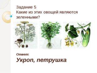 Задание 5 Какие из этих овощей являются зеленными? Ответ: Укроп, петрушка