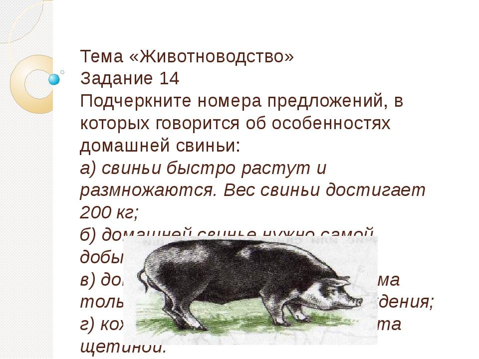 Тема «Животноводство» Задание 14 Подчеркните номера предложений, в которых...