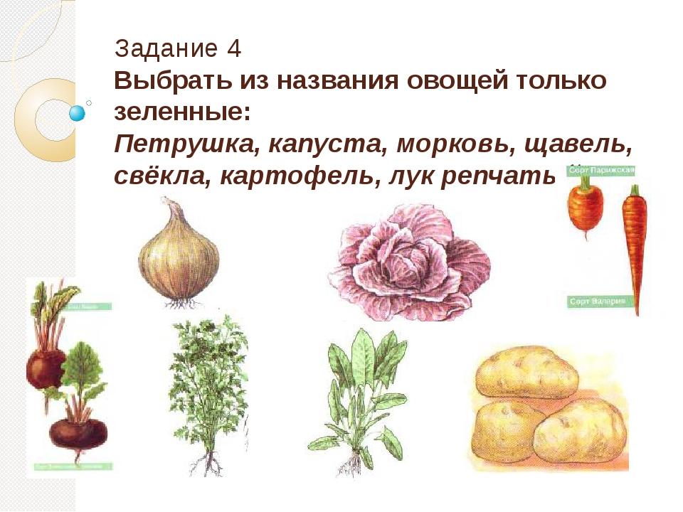 Задание 4 Выбрать из названия овощей только зеленные: Петрушка, капуста, морк...